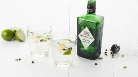 Gincocktail met citrus